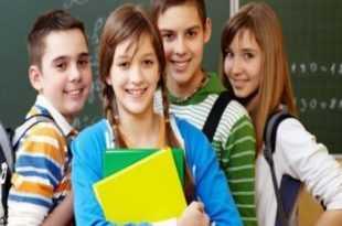 zel okullara devlet teşvikleri ve 2018 başvuruları 310x205 - Özel Okullara Devlet Teşvikleri