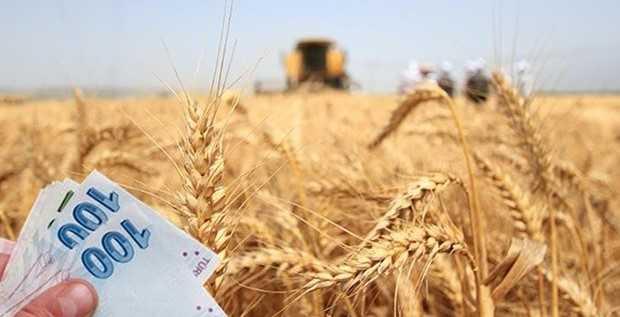 tarımsal-desteklemeler