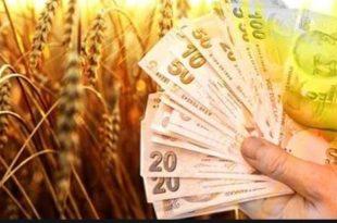 Ziraat Bankası 2020 Tarım Hayvan Kredisi Faizleri